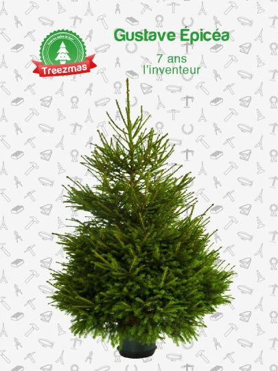 Noël écologique 007